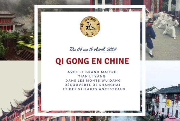 cours de qi gong chine seaux paris