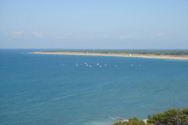 l'ile de Ré - stage Qi Gong Yi Jin Jing - Jin Ling France
